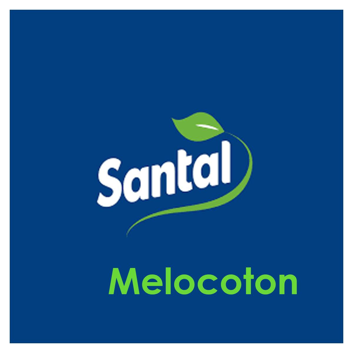 Jugo Santal Melocoton 1lt